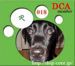 Dca_web018b1_1